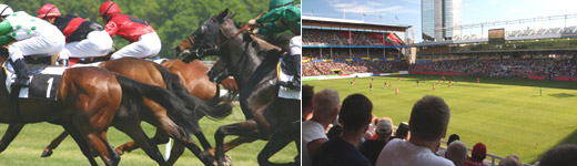 Castle Sporting football, casino and horse racing tipping services